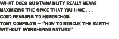 "What does sustainability really mean? maximizing the space that you have . . . Good reasons to Homeschool Tony Compolo's — ""How to Rescue the Earth without Worshiping Nature"""